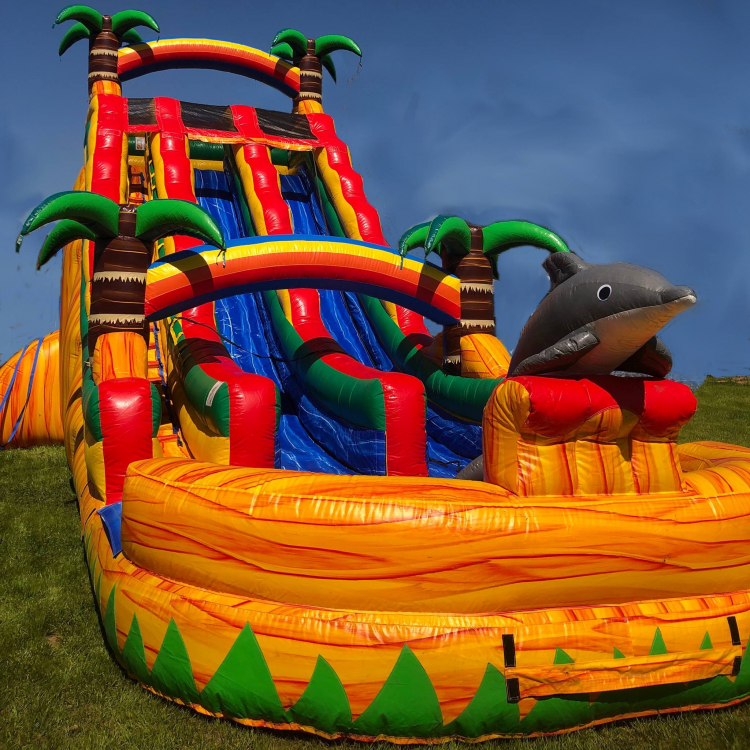 Wet Slide - Dual Lane Tropical Paradise (22' High)